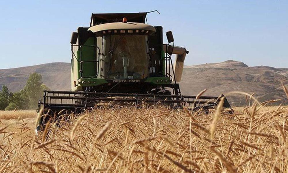 Tarımın içler acısı hali: 'Çiftçilerin yüzde 92'sinin borcu nedeniyle ipoteği var'