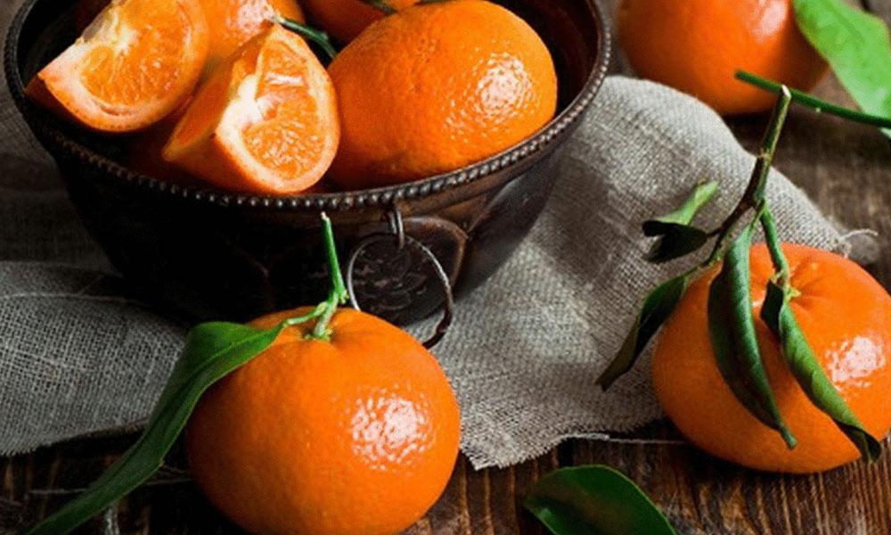 Rusya Türkiye'den ithal ettiği 550 ton mandalinayı geri gönderdi!
