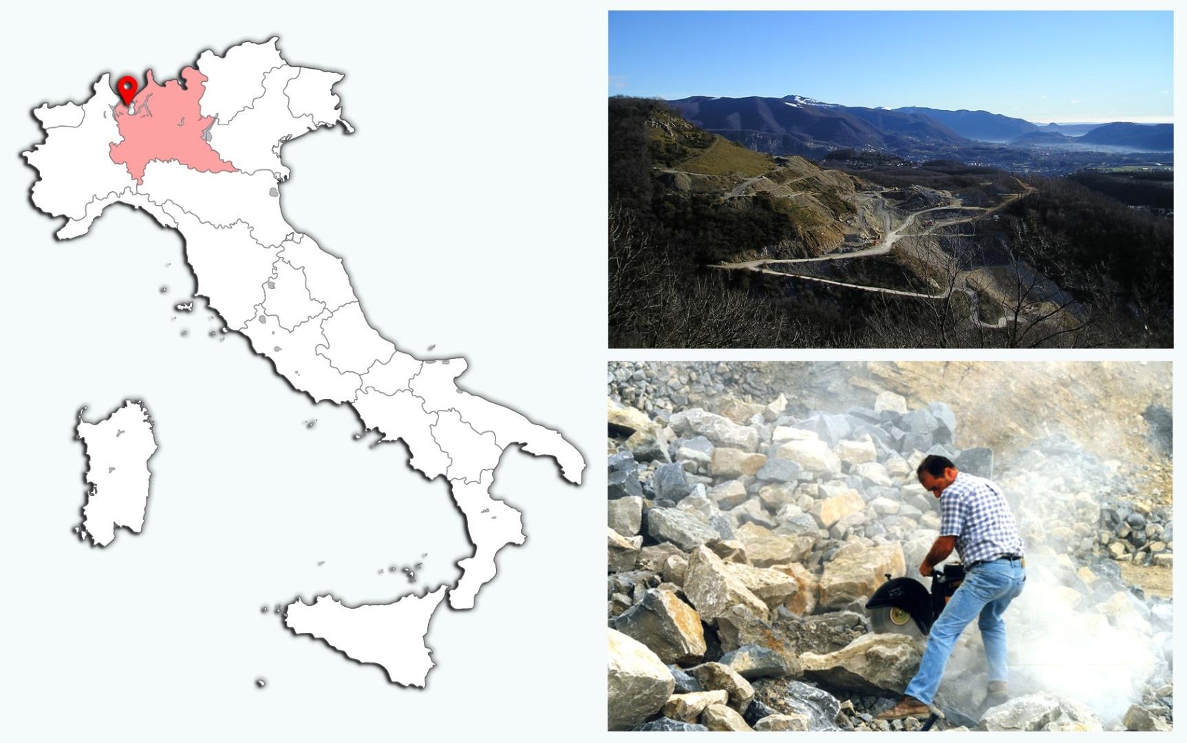 Etçil en büyük dinozor İtalya'da yaşamış