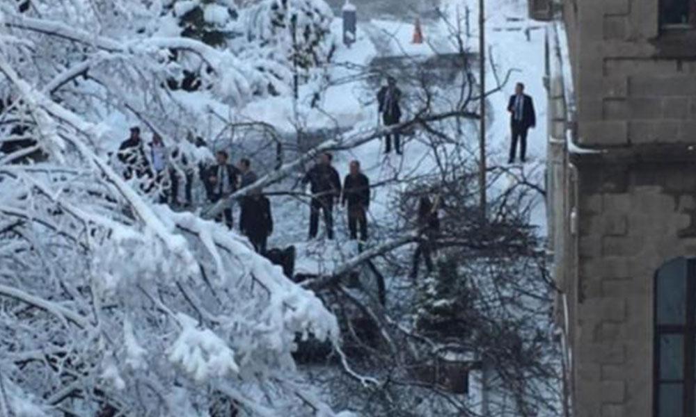 Diyanet İşleri Eski Başkanı'nın içinde bulunduğu aracın üzerine ağaç devrildi