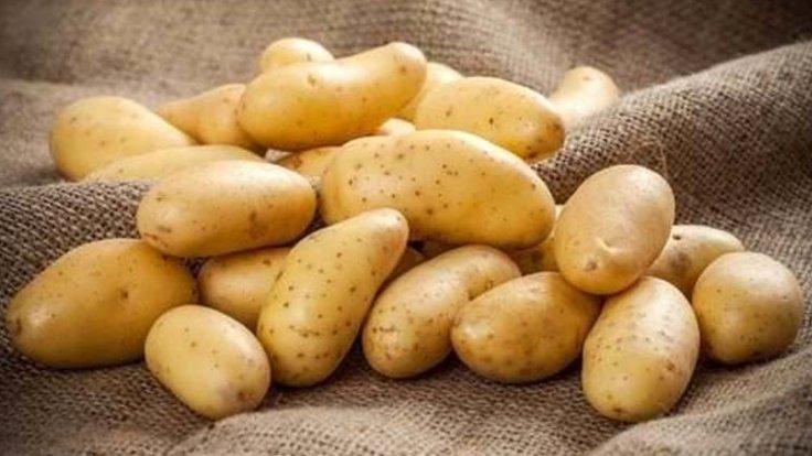 Patates üretiminde bu yıl yüzde 10 artış bekleniyor