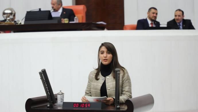 HDP'li Dersim Dağ, tutuklanan üniversite öğrencilerinin darp edilmesini Bakan'a sordu