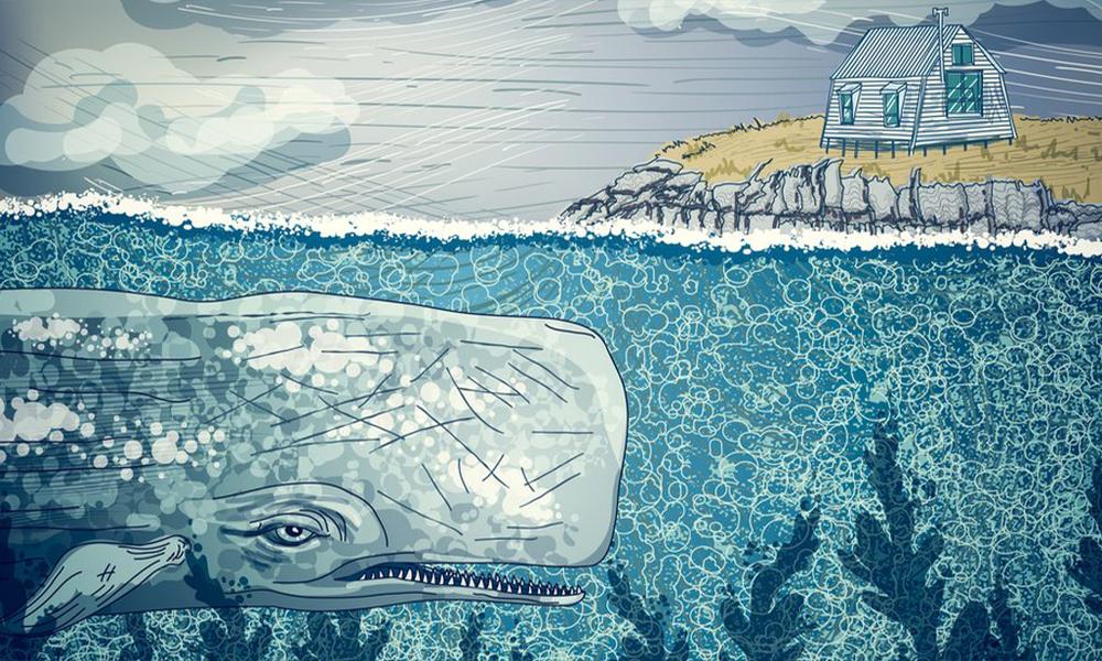 Mavi Balina nedir? 'İntihar oyununun' altında yatan gerçek ortaya çıktı