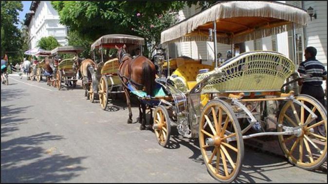 Adalar'daki atlar için karar verildi: İBB, faytoncuları işe alacak