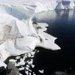 Antartika'da  güneş ışığı görmeden yaşayan canlı bulundu