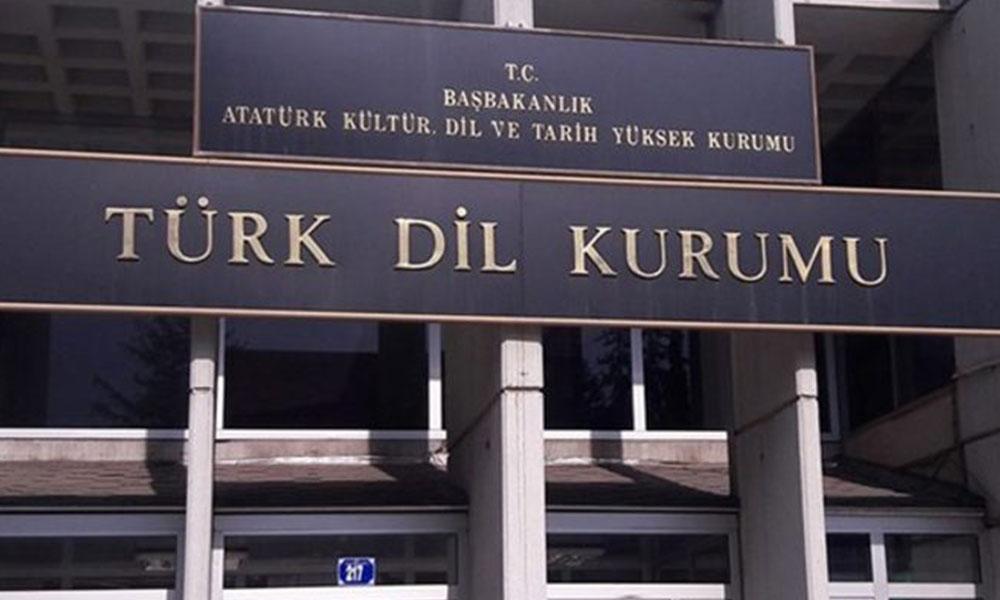 'Kadınlar Türk Dil Kurumu tarafından alenen aşağılanmaktadır'