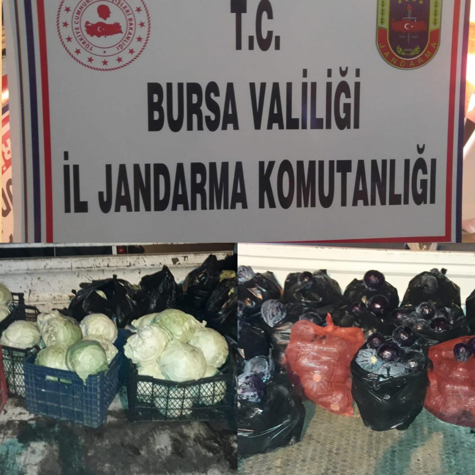 Çaldıkları meyve ve sebzeleri pazarda satan 3 şüpheli suçüstü yakalandı