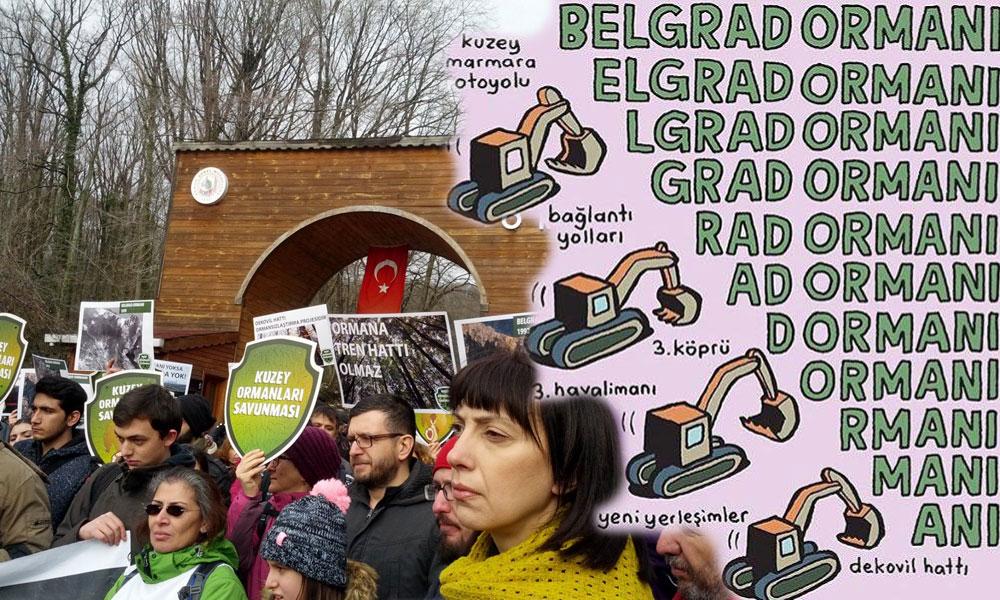 İşte iktidarın 'Belgrad Ormanı aşkı'nın hikayesi