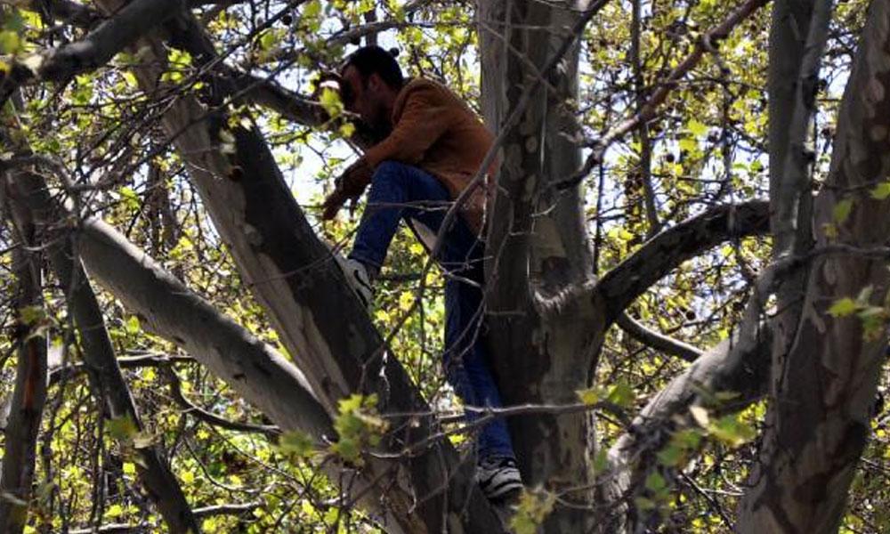 Borçlarını ödeyemeyen bir vatandaş kendini ağaca asmak istedi