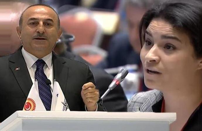 Çavuşoğlu'nun sözleri üzerine Fransız parlamenterler toplantıyı terk etti