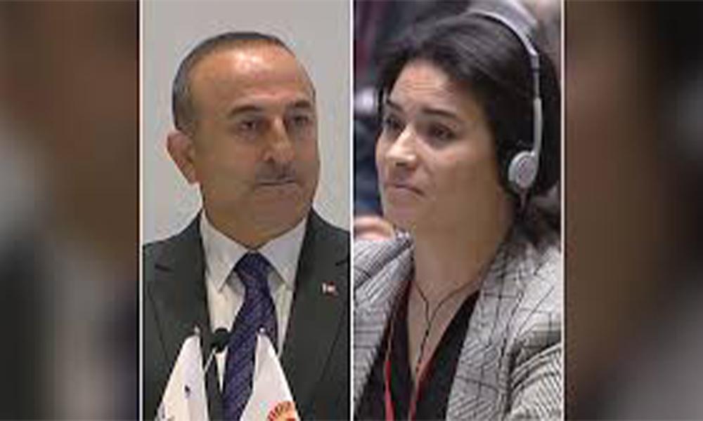 Bakan Çavuşoğlu ile Fransız Parlamenter arasında 'soykırım' tartışması