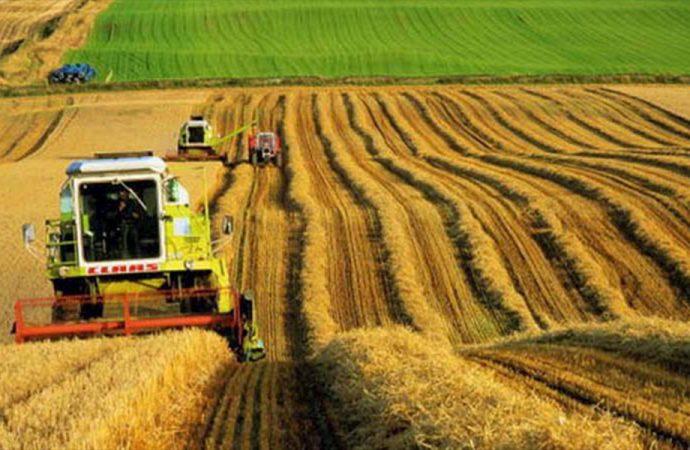 Tarım ülkesi Türkiye 126 ülkeden 133 değişik sebze ve meyve ithal ediyor