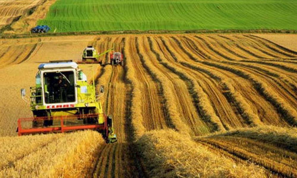 Türkiye'de yine yabancı çiftçi kazanacak