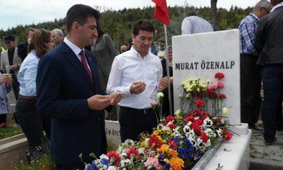 Albay Murat