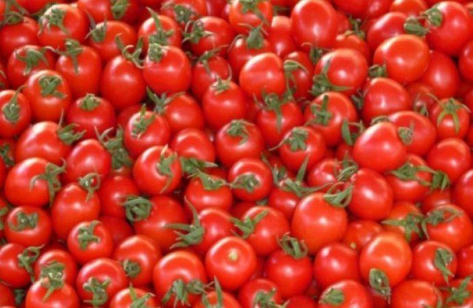 Rusya, 21 ton Türk domatesini geri çevirdi