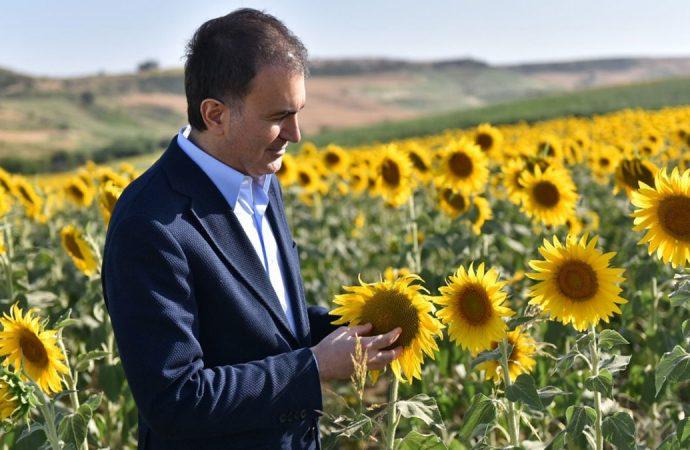AKP Sözcüsü Çelik'ten dikkat çeken 'İmamoğlu' paylaşımı: 'Bereketli topraklarda İmamoğlu yolu'