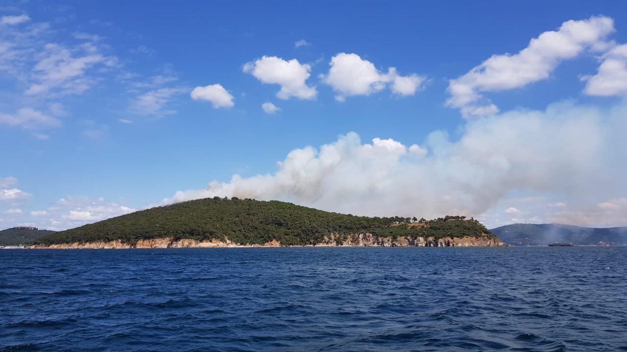 Heybeliada'da büyük yangın!