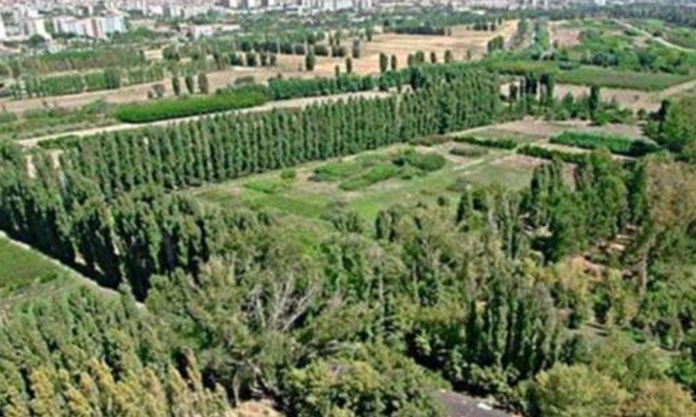 'Sürekli talan sürekli kazan' Medipol'e ikinci bağış… Bu kez de AOÇ arazisi!