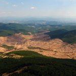 Kaz Dağları'nı katleden Alamos Gold, Türkiye'ye milyar dolarlık dava açıyor!