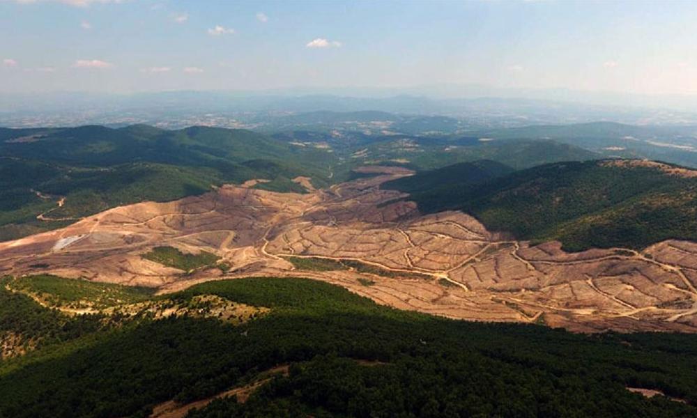 """""""Kaz Dağları'nda doğayı katleden şirkete 865 milyon lira teşvik Saray'dan"""""""