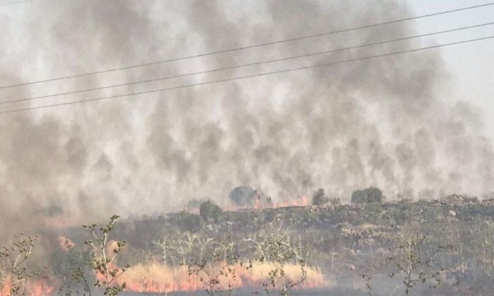 HDP'li Çelik 'Elektrik tellerinin kopması yangınlara sebep oluyor'
