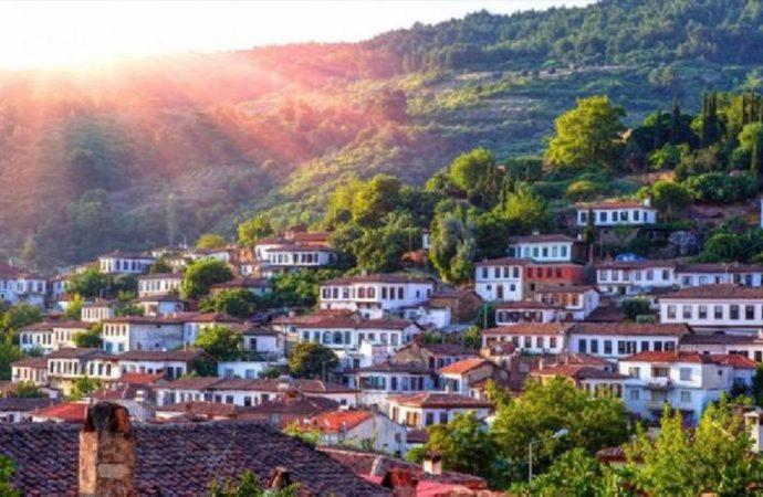 Kazdağları'ndan sonra şimdi de Şirince Köyü: Binlerce zeytin ağacı kesilecek tarım yok olacak…