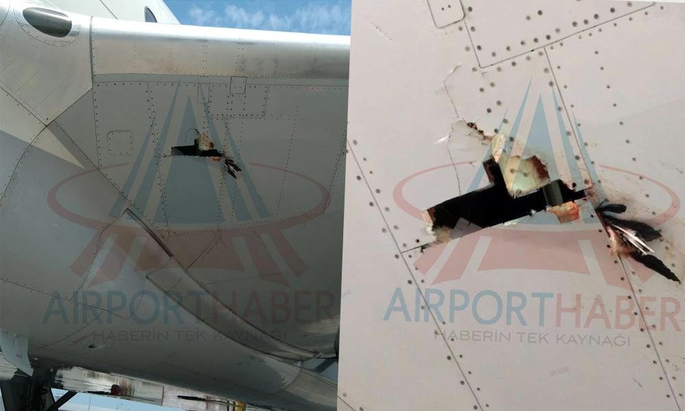 THY uçağı kuş sürüsüne daldı… Hasar alan uçak seferden çekildi!