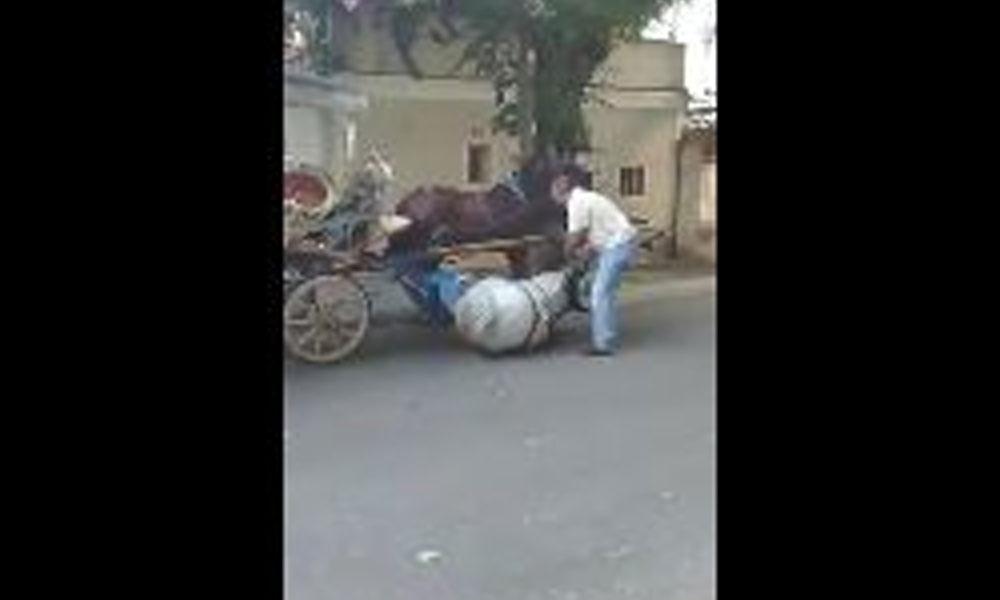 Faytona ve sıcağa dayanamayan at yere düştü, sahibi ayağa kaldırmaya çalıştı… O anlar kamerada