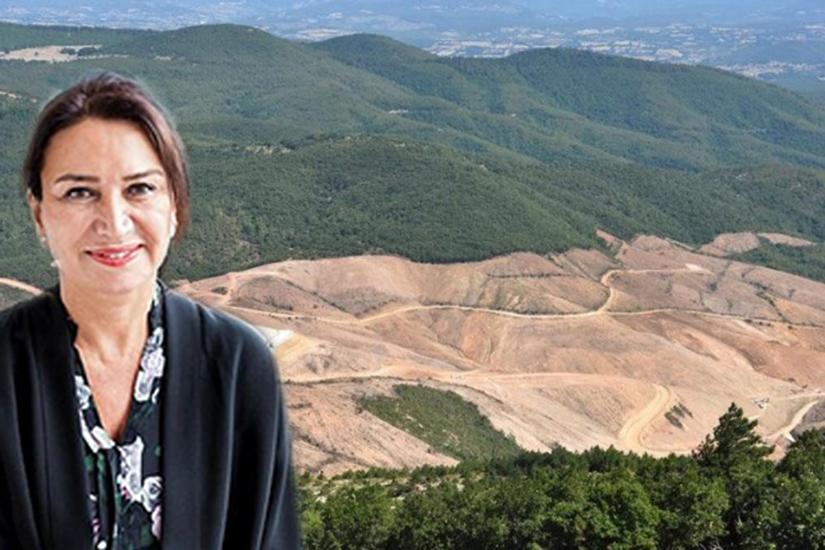 Demet Akbağ'dan 'Kaz Dağları' paylaşımı: Tarih bu katliamı affetmez