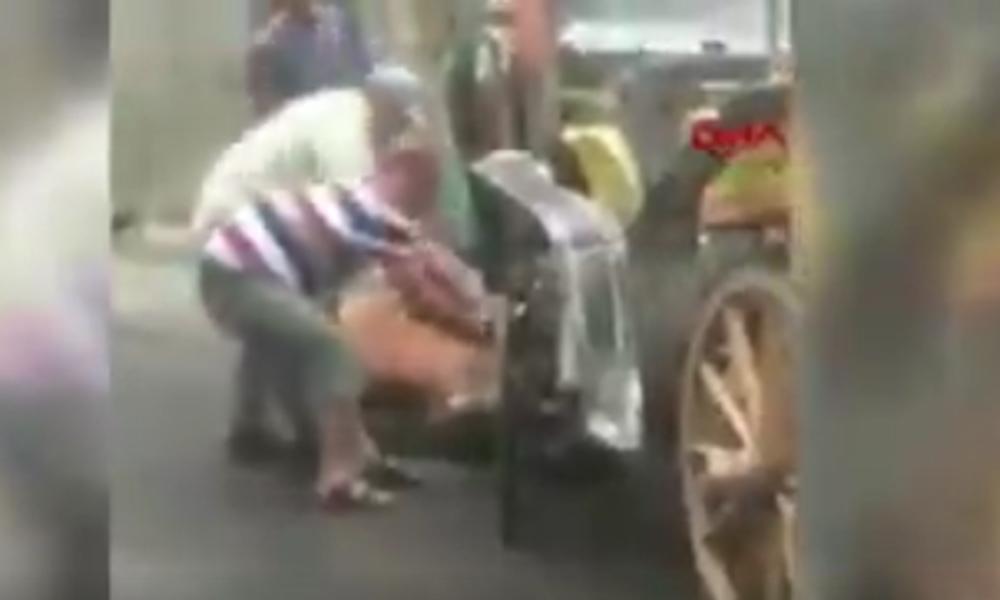 Faytona sürülen at yere yığıldı, faytoncu zorla yerden kaldırmaya çalıştı