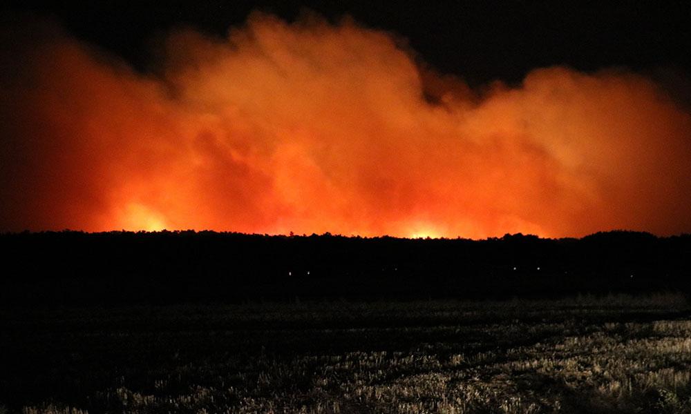 Tarihi Gelibolu Yarımadası'nda büyük orman yangını: İşte ilk görüntüler