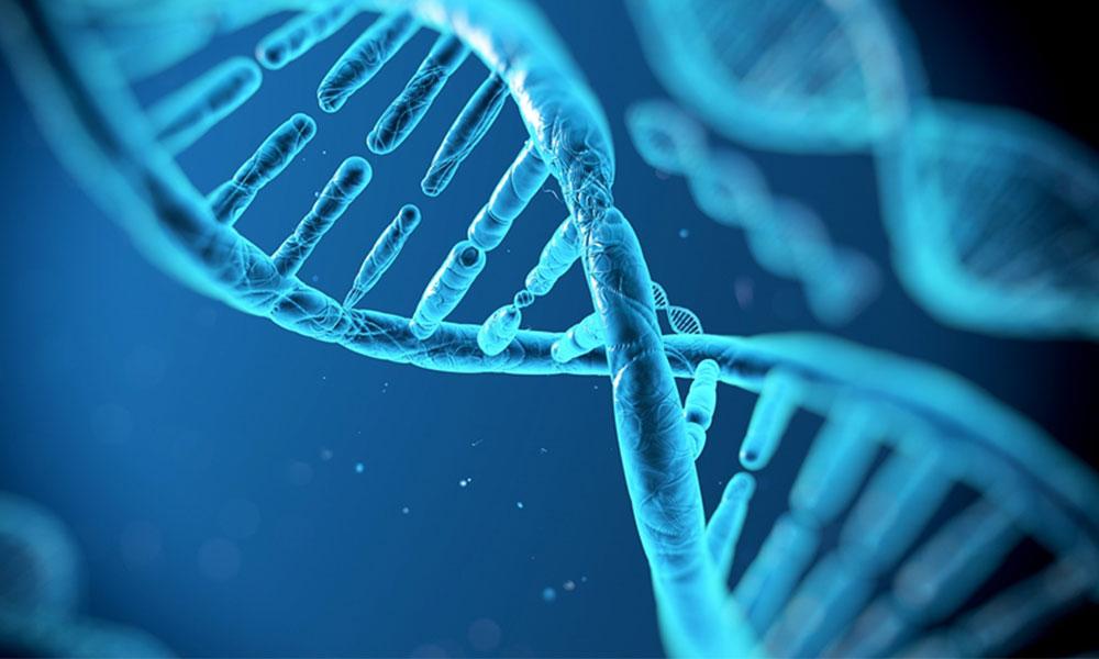 Genetik hastalıkların tedavisi artık hayal değil!
