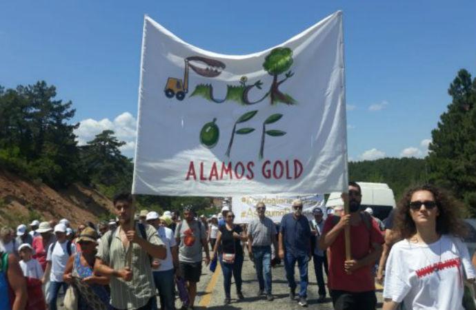 Yazarlar Ormanı'ndan Kaz Dağları çağrısı: Her bilet bir fidan!