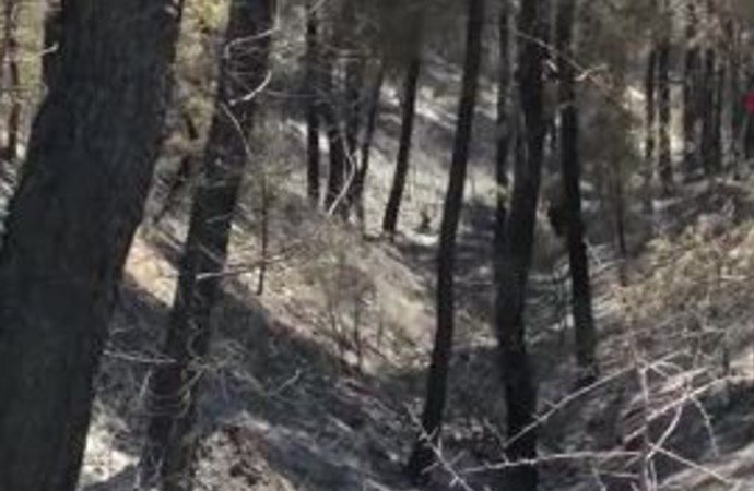 Karabağlar'da yangın sonrası acı tablo