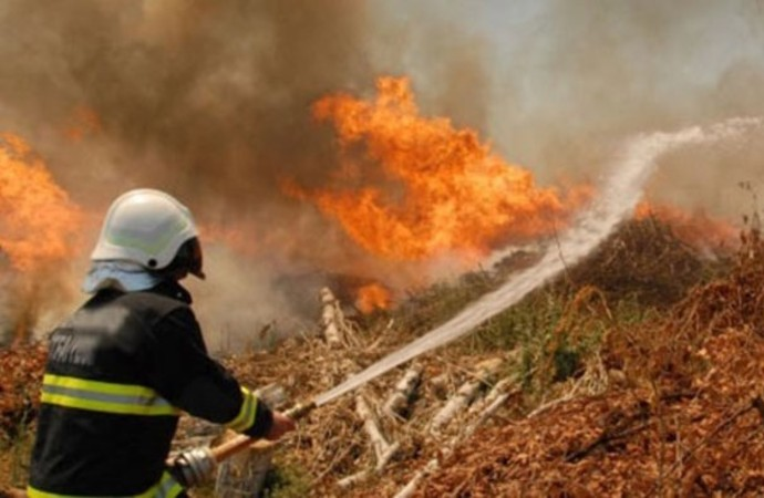 Orman Bakanlığı 'yangınla mücadele' için sözleşmeli personel alacak