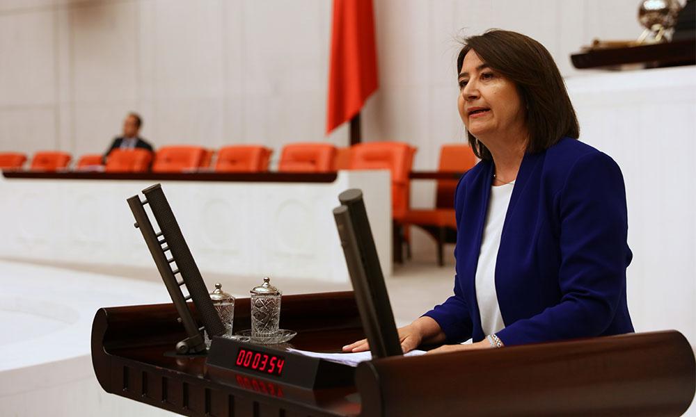 HDP'li Kemalbay: Türkiye'nin oksijen deposuna devlet eliyle saldırı gerçekleştiriliyor