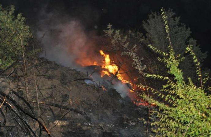Tekirdağ'da ormanlık alanda yangın: 200 dönümlük alan kül oldu