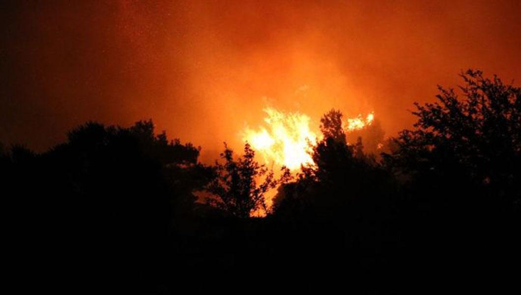 Tarihi Gelibolu Yarımadası'nda büyük orman yangını!
