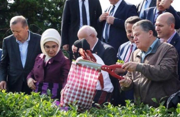 TFF'de AKP kıyağı: Eker'in oğlu ile Yargıtay Başkanı'nın oğluna usulsüz atama