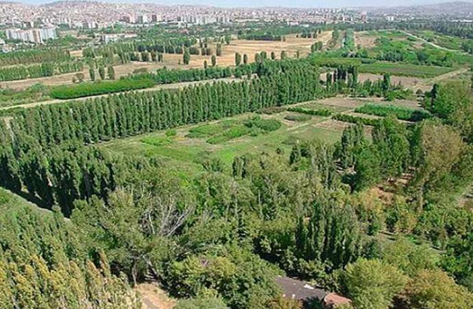 Atatürk Orman Çiftliği talan ediliyor!