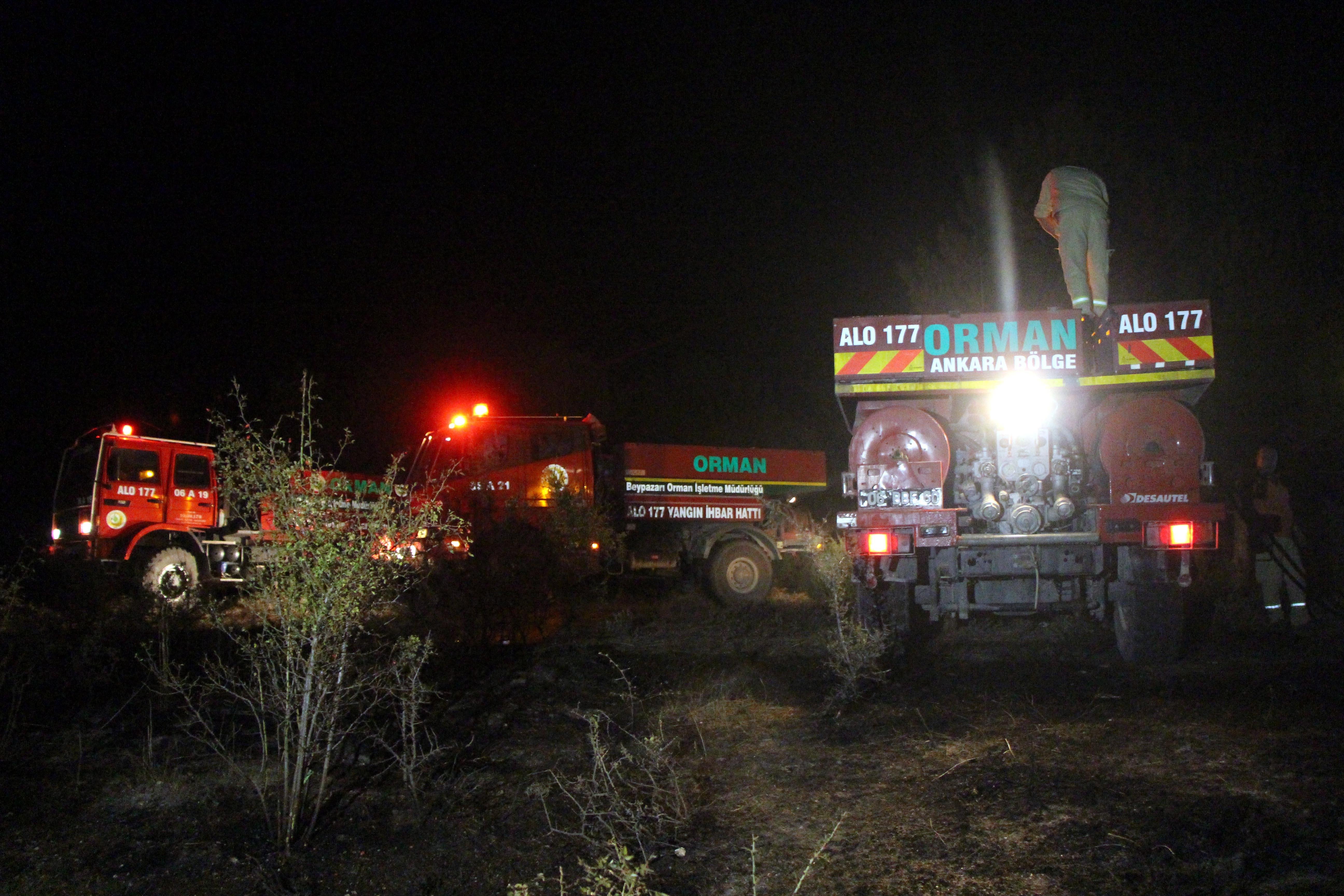 Bolu Kıbrıscık'ta orman yangını