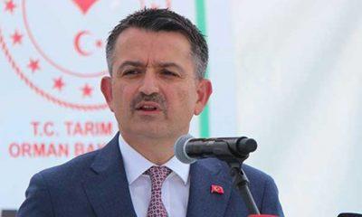 Tarım Bakanı'nından gazetecilere: Boşuna beklemeyin, fındık fiyatını Cumhurbaşkanımız açıklayacak