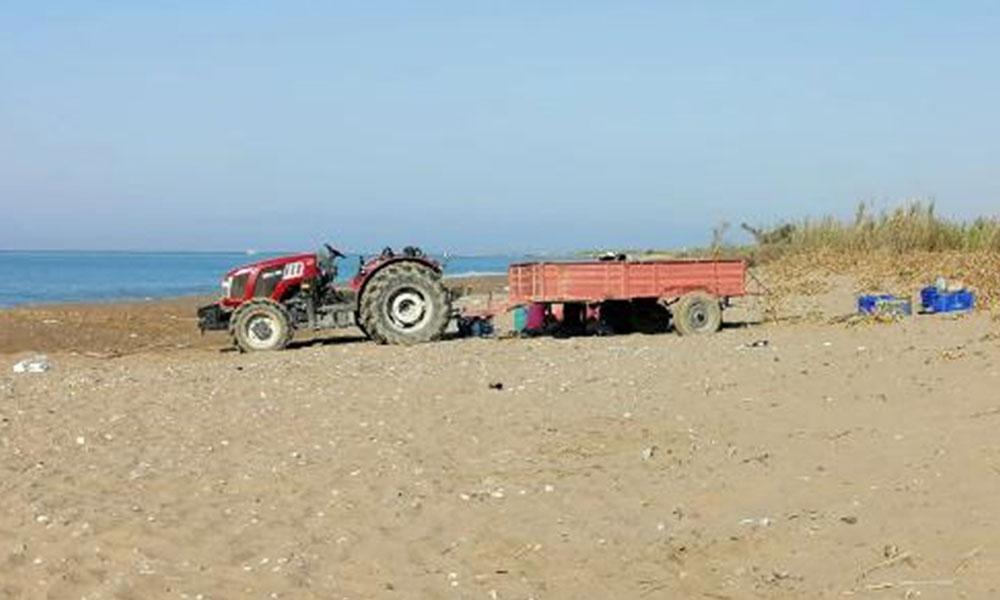 """Caretta caretta sahiline traktörle girdi, uyarılınca """"Sizi buraya gömerim"""" diye tehdit etti!"""