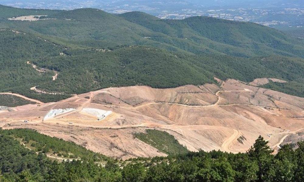 Binlerce ağaç katletmek yetmedi, Kaz Dağları'nı delik deşik edecekler! Tam 155 firma…