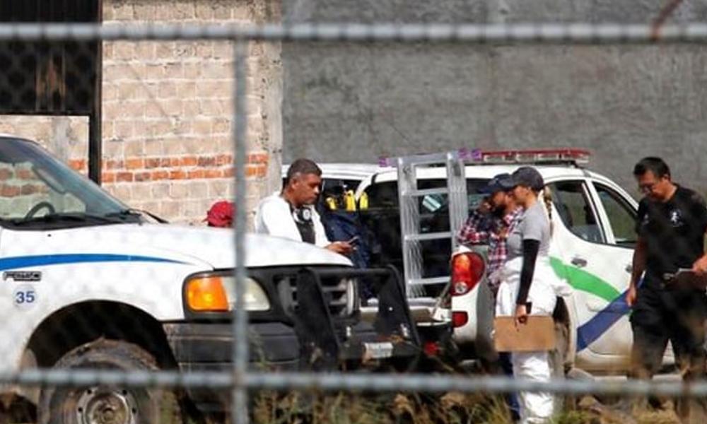 Meksika'da çiftlikte bulunan çantaların içinden 25 ceset çıktı