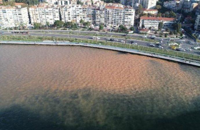 İzmir'de körfezin rengi kahverengiye döndü
