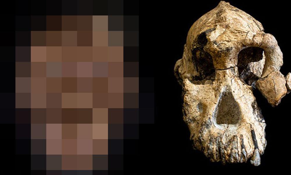 3.8 milyon yıl önce neye benziyorduk! İşte ilk defa bulunan yüz kemiği