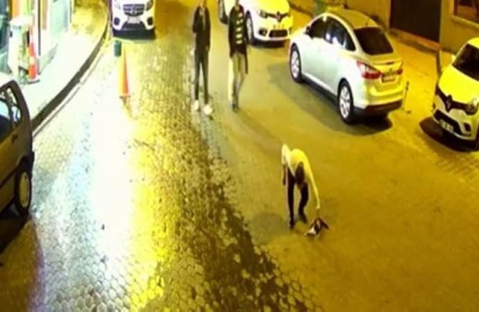 Soluk borusuna cisim kaçan kediyi hayata döndürdü… O anlar kamerada