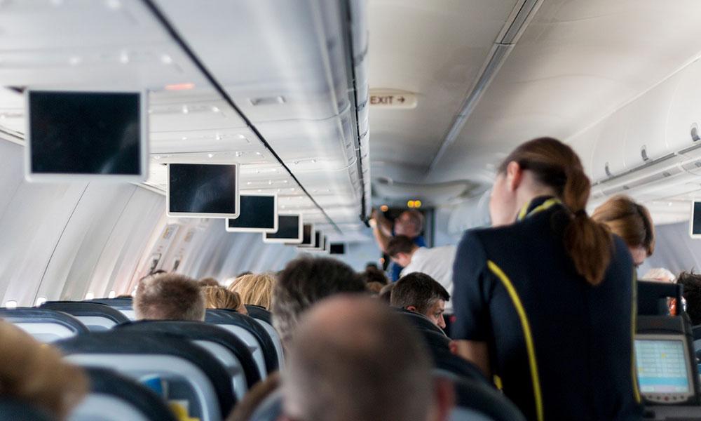 Uzun uçak uçuşlarına dikkat! İçme suyunda 'böcek yumurtaları' iddiası