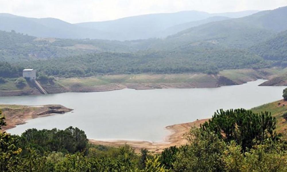 Vefa Salman: Su seviyesi yüzde 29'a düştü, yaklaşık 2 aylık suyumuz var